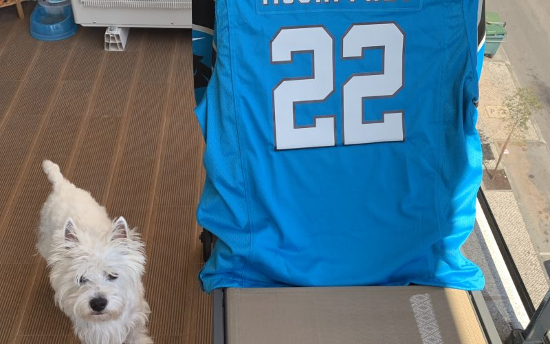 Westie dog next to a Carolina Panthers McCaffrey tshirt